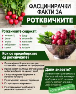 Факти за ротквички