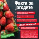 Факти за јагодите